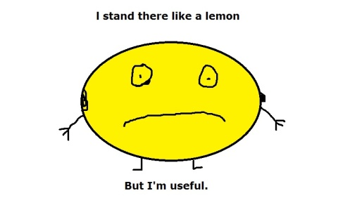 And all that I can see, is just another yellow lemon tree